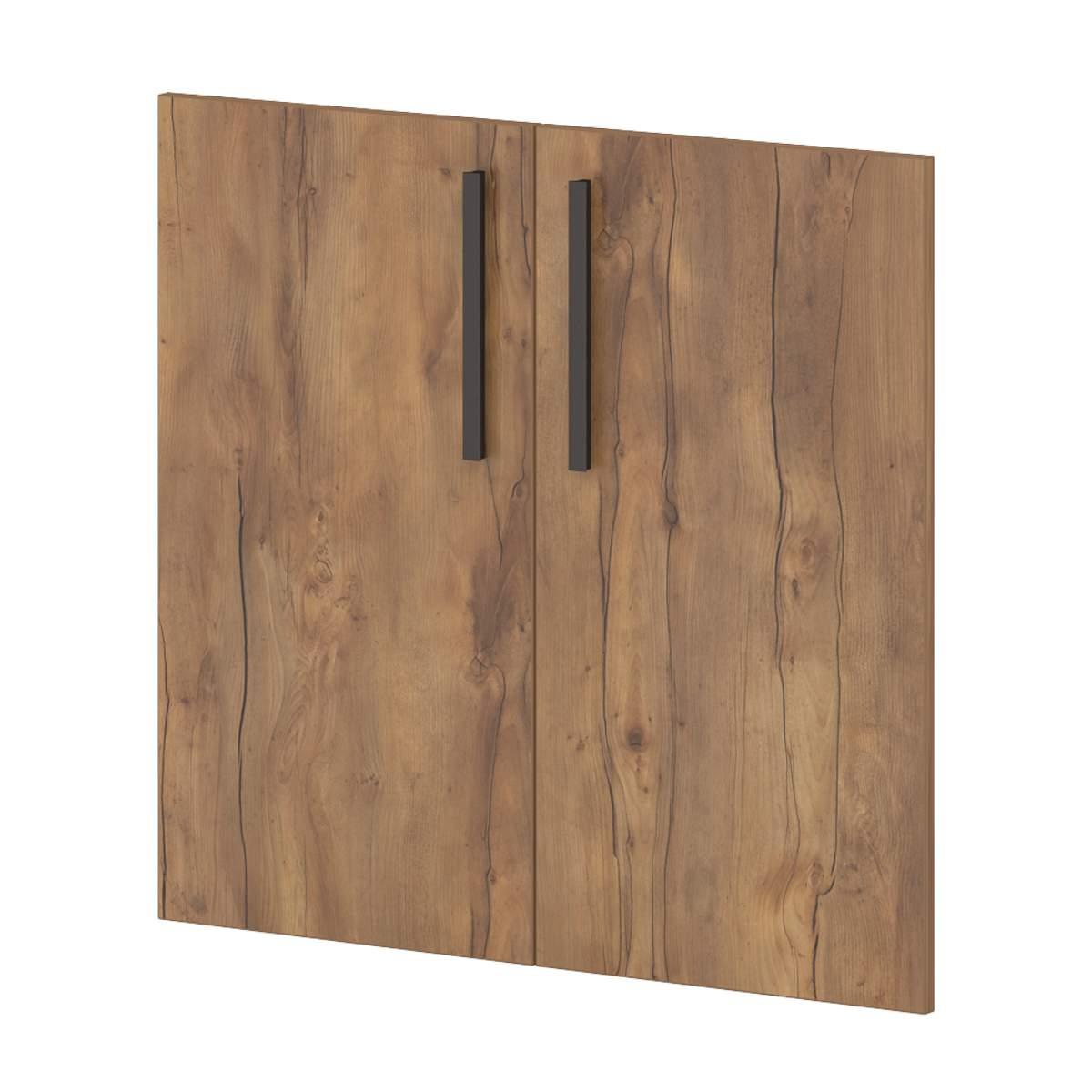 Двери ЛСДП 810x18x759